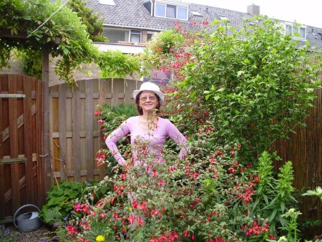Уход за фуксиями в саду
